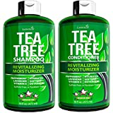 Tea Tree Shampoo and Conditioner Set - with 100% Australian Tea Tree Oil - for Dandruff, Dry Scalp, Itchy Hair - Sulfate & Paraben Free - for Men and Women - 2 bottles 16 fl oz each