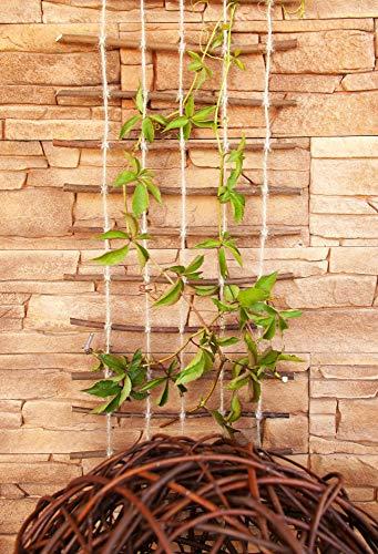 Floranica® Rankhilfe, Rankgitter, Rankleiter aus gekochter natürlicher Weide und Juteschnur bedenkenlos für Gartengemüse und Tiere, Länge: 200 cm, Breite:50 cm - 4
