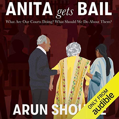 Anita Gets Bail cover art