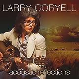 Acoustic Reflections - Live - Little Center, Clark University, Worcester, Mass. June 23, 1976