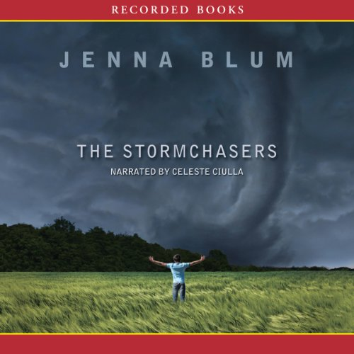 The Stormchasers audiobook cover art