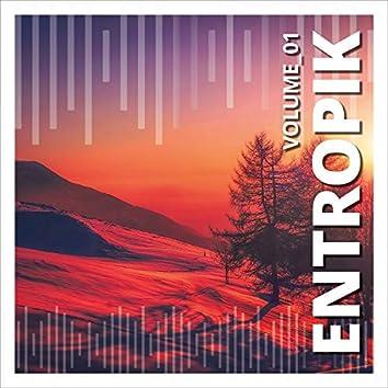 Entropik, Vol. 1