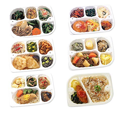 【冷凍】低たんぱくお弁当 いきいき御膳 和風セット 花(6点セット)