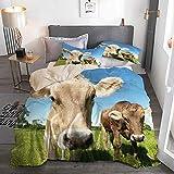 PbbrTK Bettwäsche Set,Mikrofaser,Beige,Schließen Sie herauf süßes Foto von Kühen an der Wiese in einem mit offenem Himmel,1 Bettbezug 135 x 200cm + 2 Kopfkissenbezug 50 x 80cm