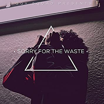 Sorry for the Waste
