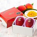 マンゴー 太陽のタマゴ 赤秀 2L 350g以上×2玉 JA宮崎経済連 宮崎県産 完熟マンゴー 太陽のたまご