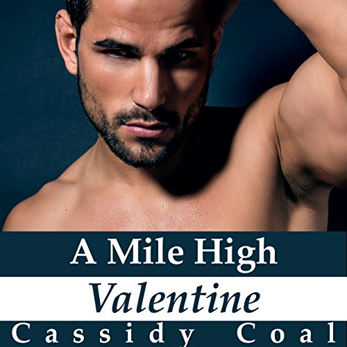 A Mile High Valentine audiobook cover art