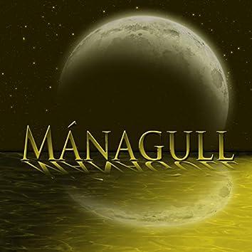 Mánagull