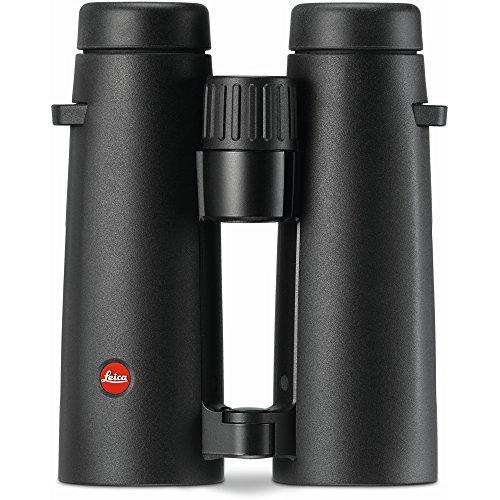 Leica 40385 Noctivid 10X42 Fernglas