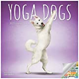 Yoga Dogs Calendar 2021 Bundle - Deluxe 2021 Yoga Dogs Wall Calendar with Over 100 Calendar Stickers (Yoga Dogs Gifts, Office Supplies)