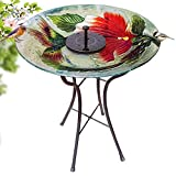 Grateful Gnome - Bird Bath - Hand Painted Glass - Red Ruby Flower - 18 inch Bird Bath with 22 inch Tall Metal Stand - Includes A Free Solar Fountain