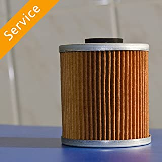 Automotive Fuel Filter Replacement