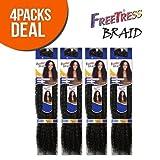 FreeTress Synthetic Hair Crochet Braids Water Wave Bulk 12' (4-Pack, 1B)