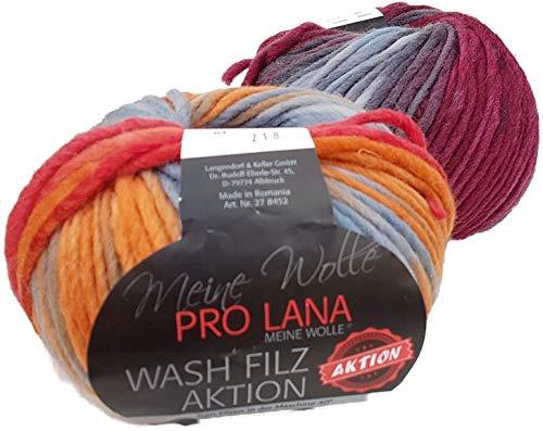 Pro Lana Wash Filz Filzwolle Color 84, Filzwolle mit Farbverlauf zum Stricken und Filzen in der Waschmaschine