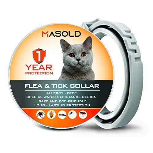 MASOLD - Collar antipulgas para Gatos, 12 Meses de protecci
