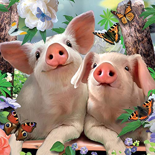 Geburtstagskarte Schweine und Schmetterlinge 3D Lentikular/holografisch