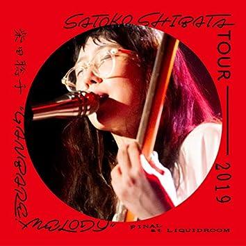 SATOKO SHIBATA TOUR 2019 ''GANBARE! MELODY'' FINAL at LIQUIDROOM