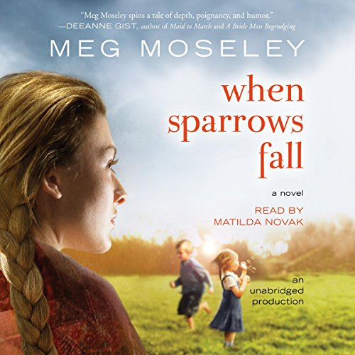 When Sparrows Fall audiobook cover art