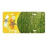 Green Pumpkin Peel Macro Photo Patterns License Plate Car Decoration Starfish Plumeria Rubra