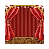 Cassisy 2,5x2,5m Vinilo Circo Telon de Fond Etapa de Teatro Cortinas De Circo Rojo Piso de Madera Vintage Fondos para Fotografia Party bebé Infantil Photo Studio Props Photo Booth