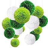MAKFORT Pompon Vert Pompon Papier Soie Papier Fleur Pompon Boule à Suspendre 6',10',12' décor Mariage Anniversaire Happy Birthday fête Lot de 15 Vert