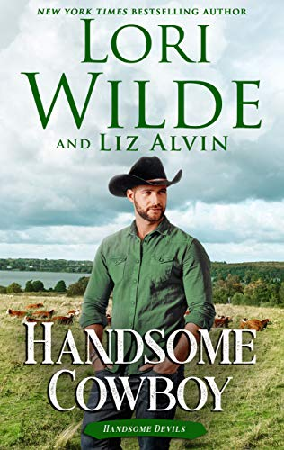 Handsome Cowboy (Handsome Devils Book 4)