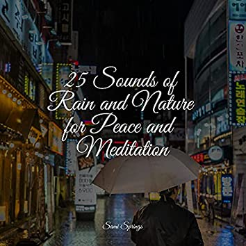 25 Sounds of Rain and Nature for Peace and Meditation