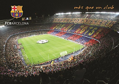 Grupo Erik Editores   Postal A4 Fcb Camp Nou 2010/11