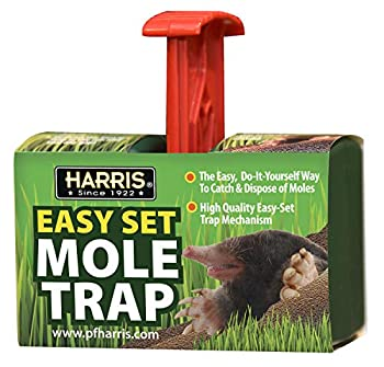 Harris Easy Set Mole Trap Mole Killer for Lawns and Alternative to Poisons and Repellents
