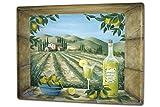LEotiE SINCE 2004 Blechschild Wandschild 30x40 cm Vintage