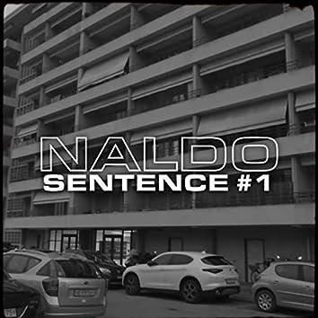 SENTENCE #1