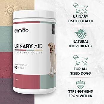 Animigo Complément Alimentaire d'Aide Urinaire pour Chiens - Urinary Support Naturel et Riche en Vitamines - Produit Contre Les Problèmes Urinaires pour Chien - A Base de Cranberry- 60 Gélules
