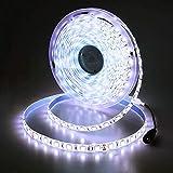 JOYLIT 24V Tiras LED Iluminación Blanco 300 LEDs SMD5050, 5M IP65 Impermeable 6000-6500K Luces LED para Armario, Dormitorio,...