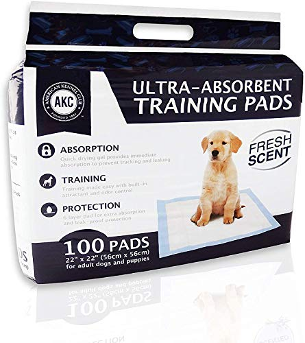 American Kennel Club AKC Training Pads, white and blue, '22'' x 22'' - pack of 100' (AKC 62920)