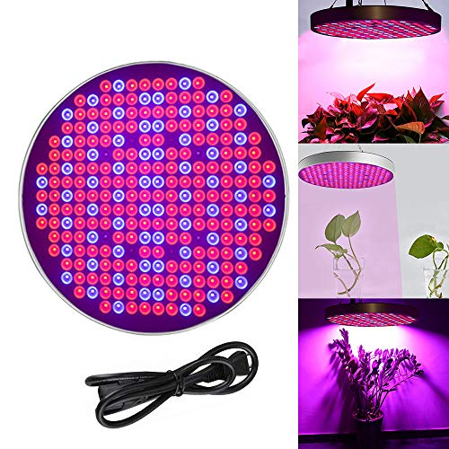 Froadp 50W LED Pflanzenlampe Innengarten Pflanze Wachsen Licht Multiple Spektrum 250 LEDs Grow Light Panel für Zimmerpflanzen Gewächshaus Pflanzenlabor Gemüse und Blumen(Blau+Rot+UV+IR, Runde)