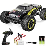 VCANNY Large Size 1: 10 Scale Electric Remote Control Truck with High Speed 40km/H 4WD 2.4Ghz, Radio Controlled Off Road RC Car Electronic Monster Truck R/C RTR Hobby Grade Cross- Country Car Buggy