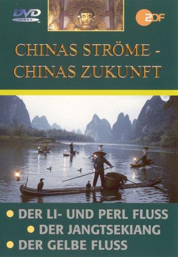 Chinas Zukunft