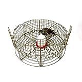 Jaula captura palomas 8 departamentos