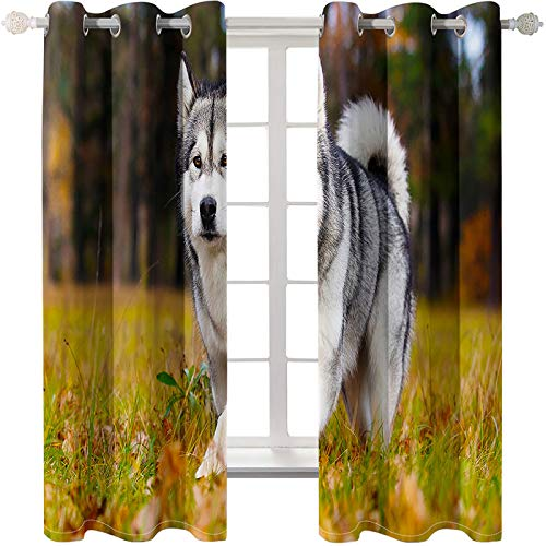 3D Digital Printing And Printing Curtains European Style Simple And Creative Curtains Super Strong Blackout Curtains Can Be Washed 2 Pieces