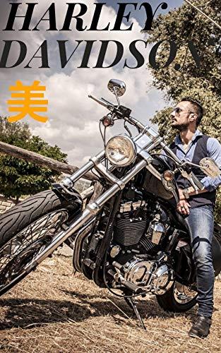 憧れの Harley Davidson 美2