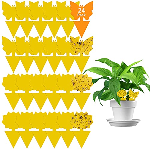 24 Pack Sticky Fruit Fly and Fungus Gnat Trap Yellow Sticky Bug Insect Killer for Indoor and Outdoor Houseplant
