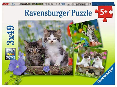 Ravensburger - Puzzle 3 x 49, Gatitos Atigrados (08046)