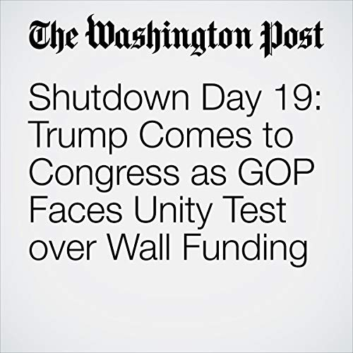 『Shutdown Day 19: Trump Comes to Congress as GOP Faces Unity Test over Wall Funding』のカバーアート