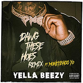 Dawg These Hoes (Remix) [feat. Moneybagg Yo]