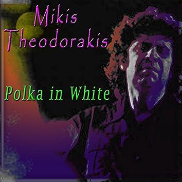 Polka In White