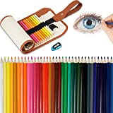 Lápices De Colores Set, 36 Kit De Dibujo De Lápiz De Color Con Roll Up Canvas Caso Para Adultos y Niños (Khaki)