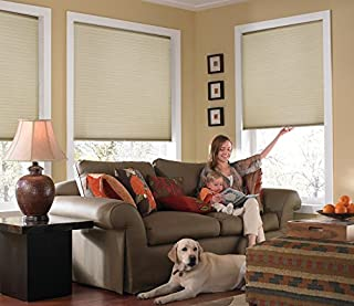 Best custom cordless single cell shades Reviews