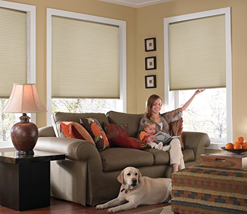 Windowsandgarden Custom Cordless Single Cell Shades, 24W x 36H, Ivory Beige, Any Size 21-72 Wide and 24-72 High