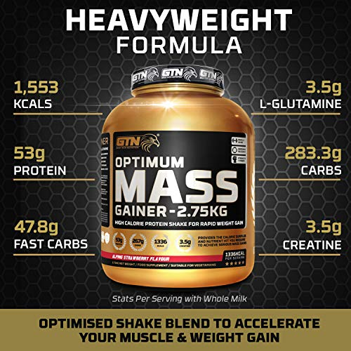 Gold Tech Nutrition Optimum Mass Gainer Protein Powder High Calorie Mass Gainer with Vitamins, Creatine Monohydrate and Glutamine. 2.75 kg. (Triple Chocolate Flavour)