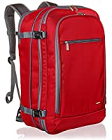 AmazonBasics Carry On Travel B...